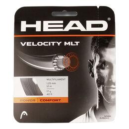 Velocity MLT 12m schwarz